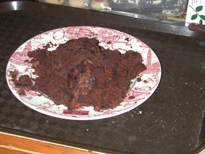 The cow pat brownie fiasco of 2004