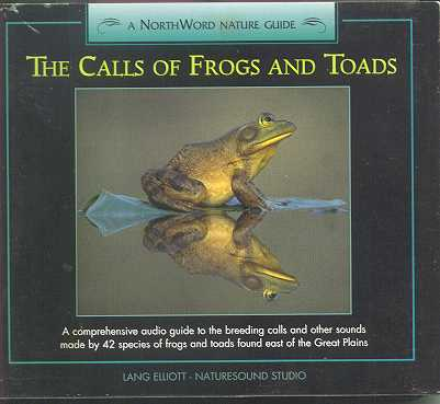 Frogs and toads.  It doesn't get more hip hop than this, eh.